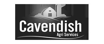 Cavendish
